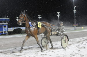 GOLDEN RIVER - Takter Johnny